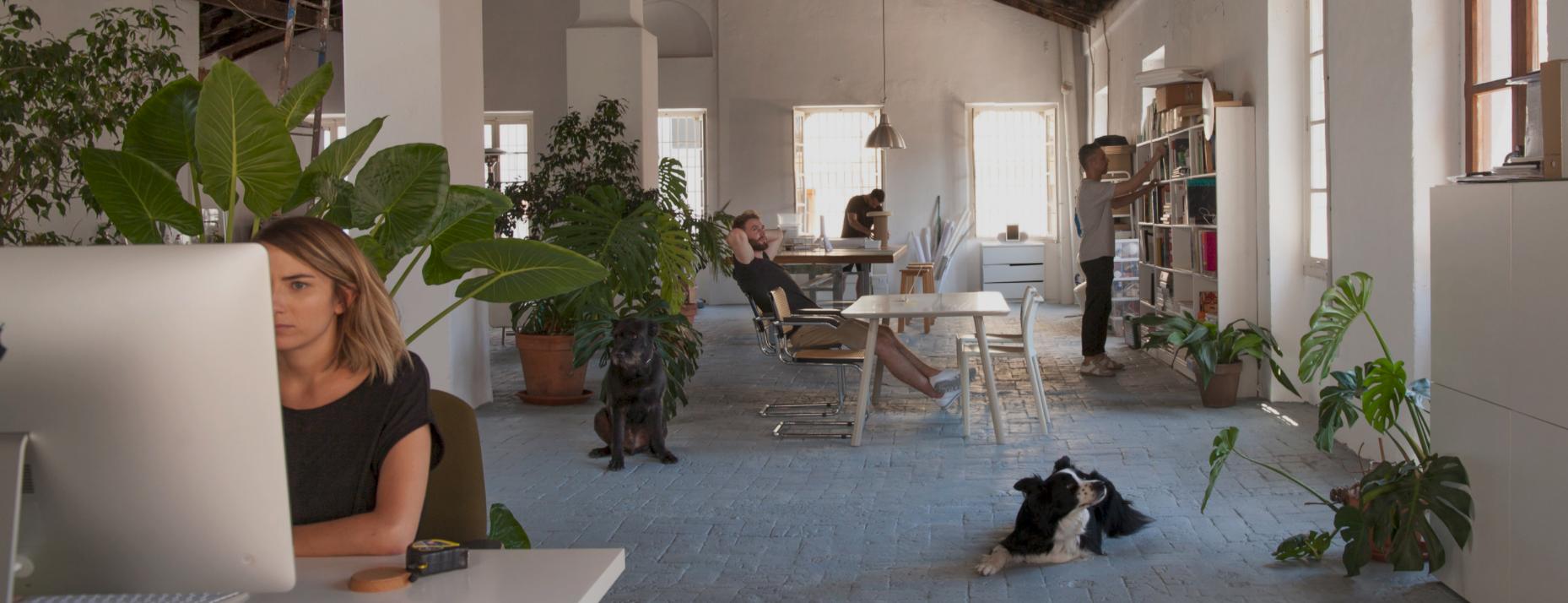 perezochando diseñador de producto en kendo mobiliario